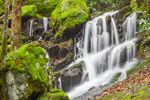 Waterfalls on Tributary of Middle Prong after Rainstorm, Great Smoky Mountains National Park, TN