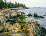 Rocky Coastline and Pendleton Point, Islesboro Island, Islesboro, ME