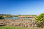 Pond and Pasture on Rural Farmland, Hardee County, Zolfo Springs, FL