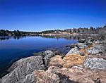 Shoreline at Crockett Cove, Vinalhaven Island