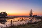 Predawn over Wetlands and Rural Farmland near Highlands Hammock State Park, Hardee County, Zolfo Springs, FL