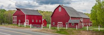 Big Red Barns along Country Road, Ware, MA