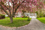 Flowering Cherry Tree and Residence in Early Spring, Groton, MA