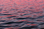 Sunset Colors Reflecting in Little Narragansett Bay off Napatree Point, Watch Hill, Westerly, RI