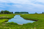 Salt Marshes and Tidal Creek at Barn Island Wildlife Management Area, Stonington, CT