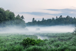 Early Morning Ground Fog over Lawrence Brook and Marshes, Royalston, MA