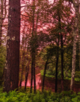 Sunset on Millers River after Thunderstorm, Bearsden Conservation Area, Athol, MA