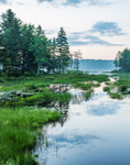 Early Morning at Sportsman Pond, Fitzwilliam, NH