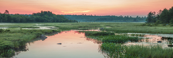 Sunrise over Wetlands in Early Morning Ground Fog near Compass Pond, off Golden Road, T2R9 WELS, ME