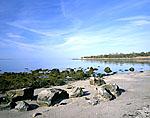 Mumford Cove, Bluff Point Coastal Reserve