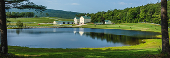 Yellow Barns on Large Farm Estate Reflecting in Pond, Andover, ME