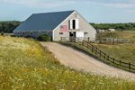 Wildflowers and Cedar-shingled Barn with American Flag and Split-rail Fence, Martha's Vineyard, Edgartown, MA
