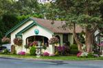 Colorful Flowers around Oak Bluffs Home, Martha's Vineyard, Oak Bluffs, MA
