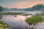 Natty Pond Brook and Wetlands with Early Morning Ground Fog at Sunrise, Hubbardston, MA
