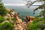Cliffs of Pink Granite along Rocky Shoreline at Bass Harbor Head, Acadia National Park, Bass Harbor, Tremont, ME