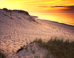 Dunes at Sunset, Sandy Neck, Cape Cod
