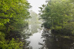 Early Morning Ground Fog and Reflections on Tully River, Royalston, MA