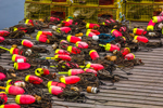 Colorful Lobster Buoys on Wharf at Thurston's on Bernard Harbor, Village of Bernard, Tremont, ME