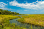 Salt Marsh and Tidal Creek at Mashomack Preserve off Majors Harbor, Shelter Island, NY