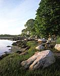 Shoreline of Pine Island, Pine Island Bay