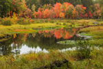Reflections in Tributary of Otter River in Early Autumn, Birch HIll Recreation and Wildlife Management Area, Winchendon, MA