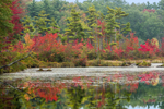 Early Fall Colors Reflecting in Lake Rohunta, Orange, MA