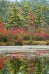 Early Fall Colors Reflecting in Lake Rohunta, Orange, MA