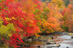 Colorful Fall Foliage along Millers River, Royalston, MA