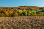 Farm, Corn Fields, and Forests in Fall, Fairfield, VT
