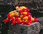 New Lobster Buoys Ready to Go