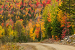 Country Road through Mountainsides of Colorful Fall Foliage, Rangeley Lakes Region, Dallas Plantation, ME