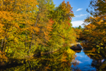 Colorful Foliage along Ellis River in Fall, Andover, ME
