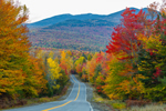 Colorful Foliage along Country Road with Mount Abraham in Distance, Salem Township, ME