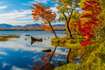 Fall Foliage along Ellis Pond with Reflections (aka Silver Lake, Roxbury Pond), Roxbury, ME