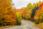Fall Foliage along Rangeley Lakes National Scenic Byway, Rangeley Lakes Region, Township D, ME