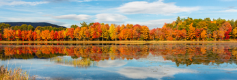 Foliage and Cloud Reflections in Davis Pond in Fall, Rumford, ME