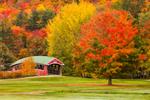 Jackson Village Covered Bridge at Wentworth Golf Club in Fall, White Mountains Region, Jackson, NH