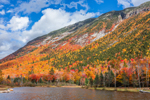 Rock Cliffs and Foliage on Side of Mount Webster from Willey Pond, Crawford Notch State Park, White Mountains Region, Harts Location, NH