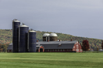 Big Red Barns and Silos on Hiddenhurst Farm in Fall, Taconic Mountains Region, North East, NY