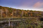 Sunset over Wetlands in Fall, Warren, CT