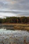 Lake Rohunta at Sunset, New Salem, MA