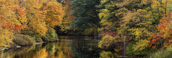 Colorful Foliage along Millers River in Fall, Athol, MA