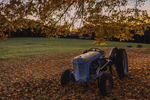 Old Fordson Tractor under Sugar Maple Trees with Fall Foliage, Royalston, MA