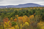Forests and Fall Foliage with Mount Wachusett in Distance, View from Berlin, MA