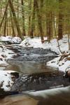 Gunn Brook in Winter, Sunderland, MA
