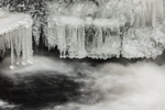 Dangling Icicles on Scott Brook in Winter, Fitzwilliam, NH