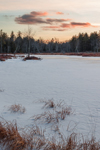 Scott Brook Wetlands at Sunset in Winter, Fitzwilliam, NH
