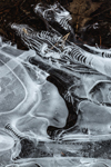 Swirling Ice Patterns on Tributary of Swift River, Petersham, MA