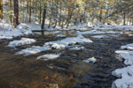 Dappled Light Shines on Quanduck Brook in Winter, Sterling, CT