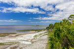 Beach on a Sunny Day at Big Bend Wildlife Management Area, Tide Swamp Unit, Perry, FL
